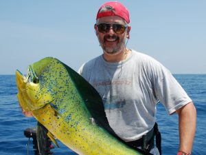 A freshly caught Mahi Mahi or Dophin Fish
